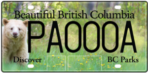 ICBC News Care Plates